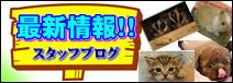 ペットプラザ高槻店スタッフブログ