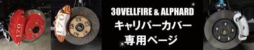 """30アルファード&ヴェルファイア専用ページ"""""""