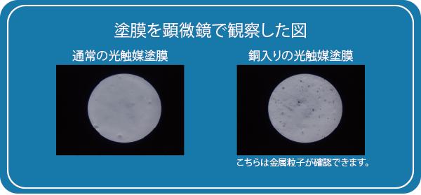 塗膜を顕微鏡で観察した図