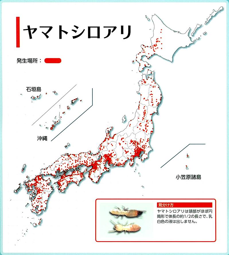 ヤマトシロアリ分布図