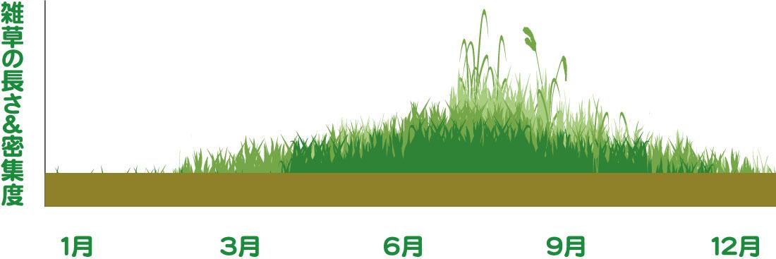 主な雑草の年間サイクル